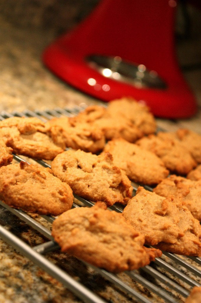 gluten free peanut butter cookies on a cookie sheet with a red kitchen aid mixer in the background
