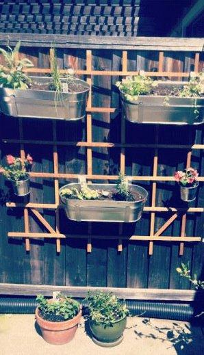 DIY herb garden