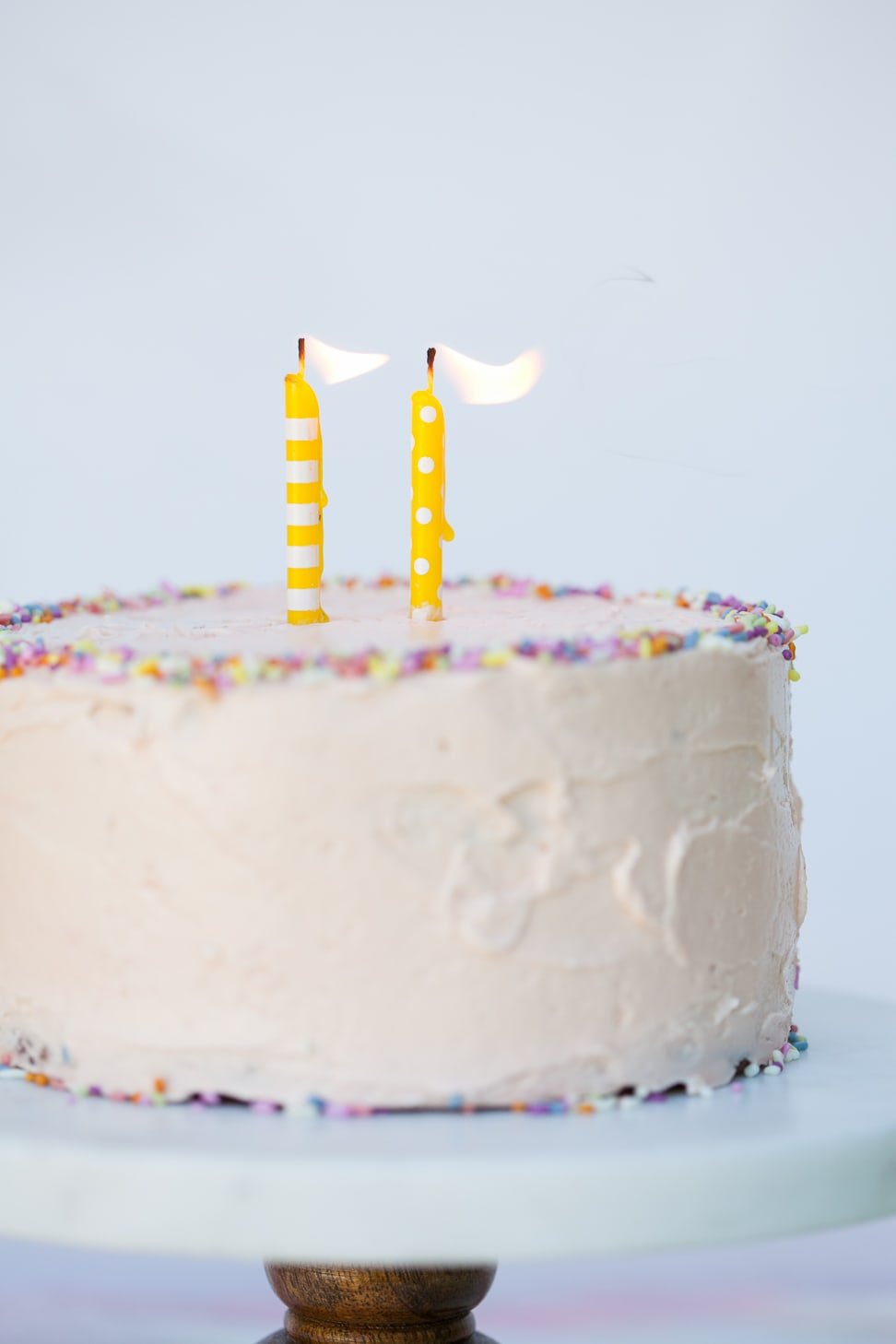 Grain-Free Birthday Cake | Danielle Walker's Against all Grain 6