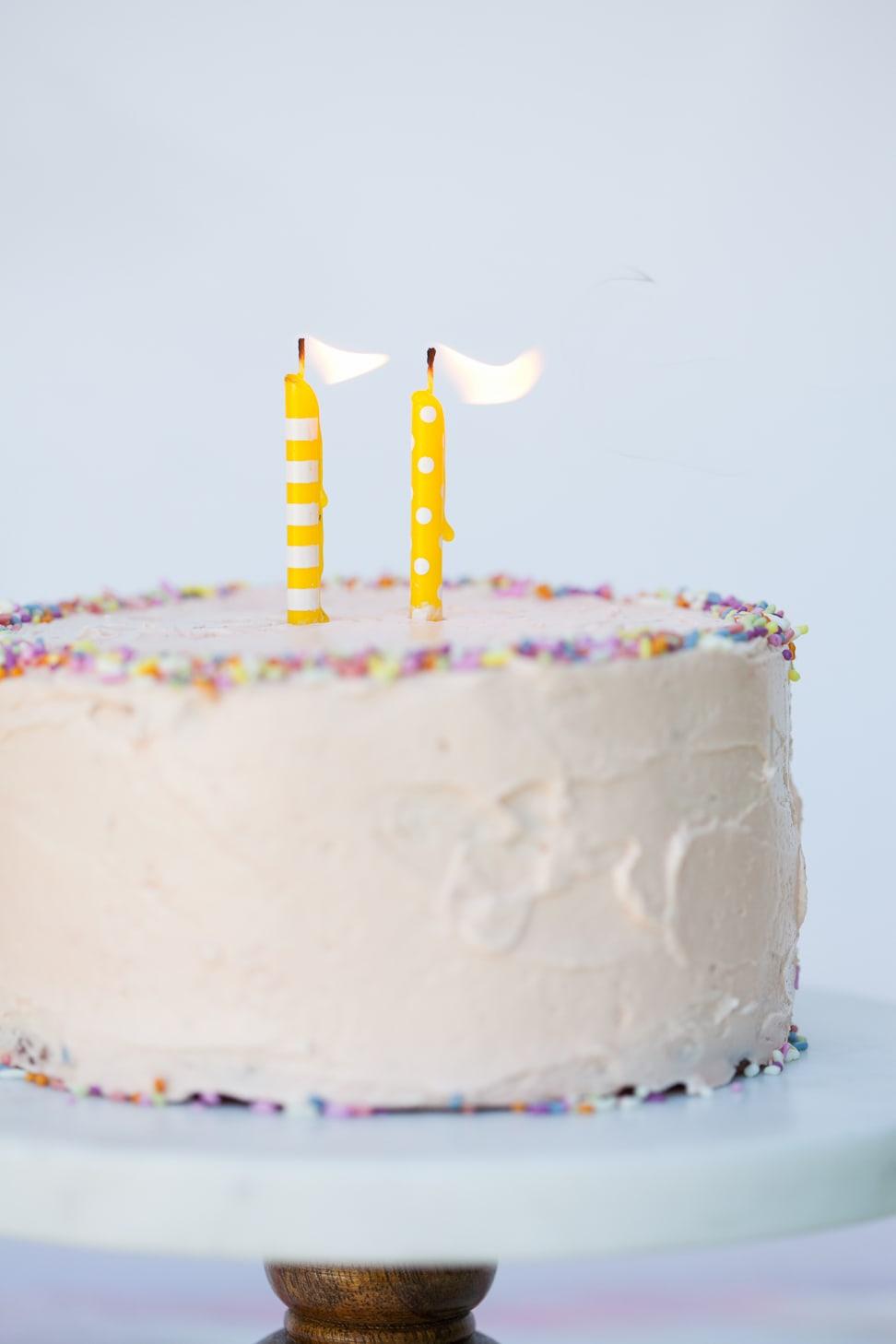 Grain-Free Birthday Cake | Danielle Walker's Against all Grain 6
