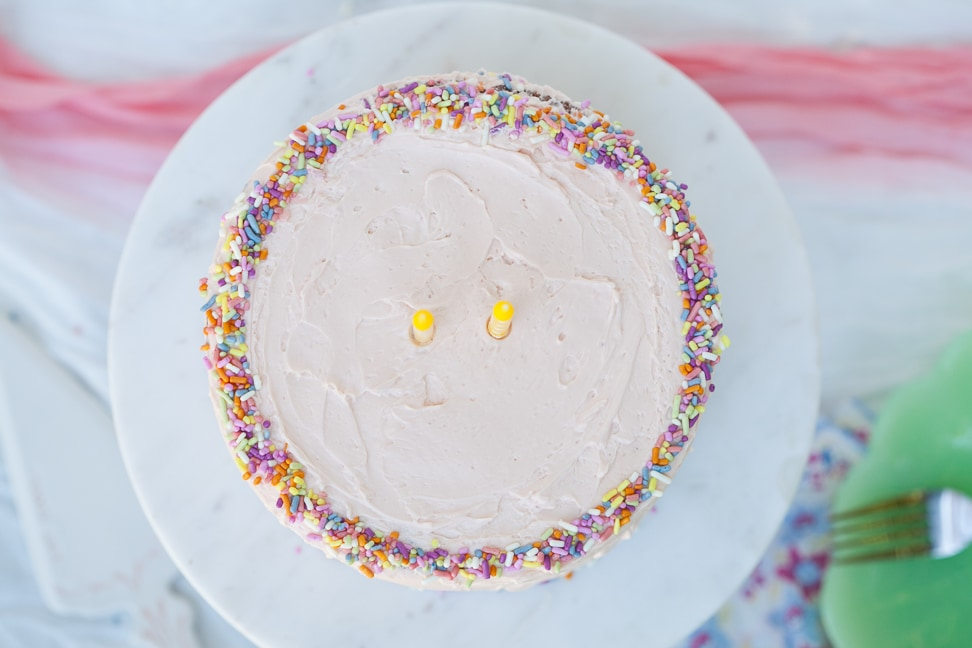 Grain Free Birthday Cake By Danielle Walker Against All Grain