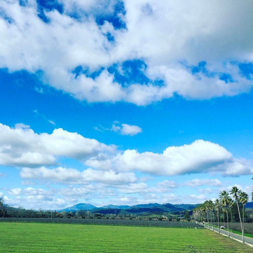 napa blue skies