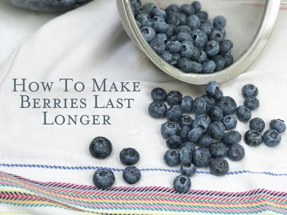 Feature Berries