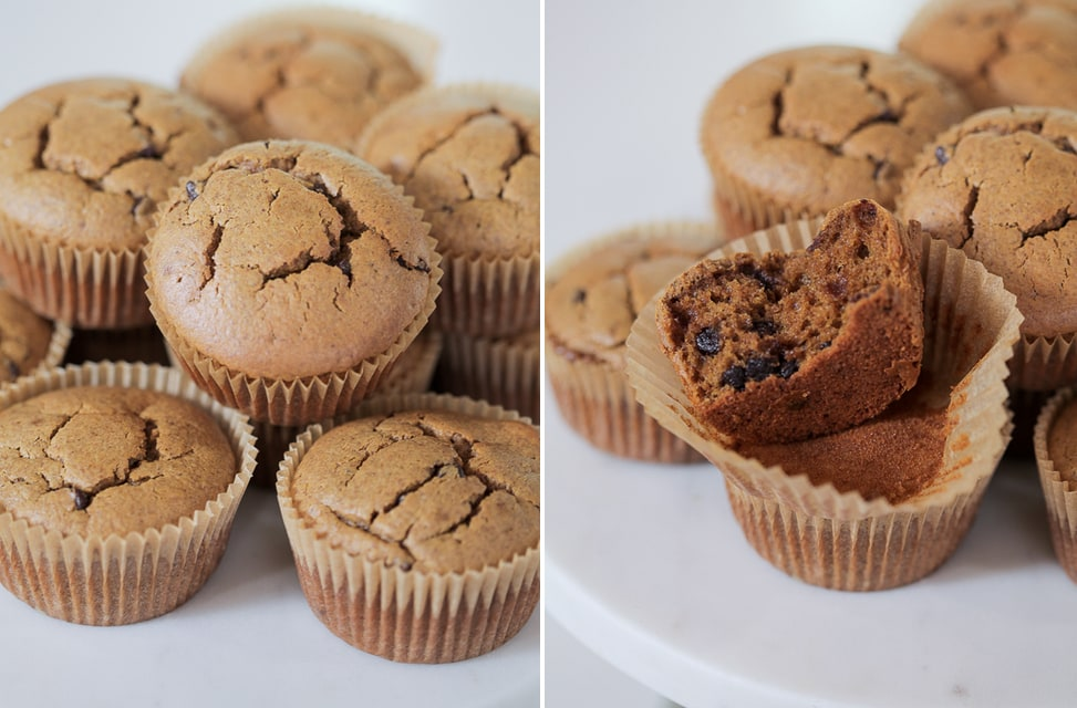 Paleo Pumpkin Chocolate Muffins | Danielle Walker's Against all Grain