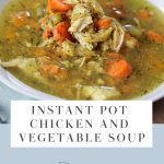 Bowl of chicken and vegetable soup made with an Instant Pot