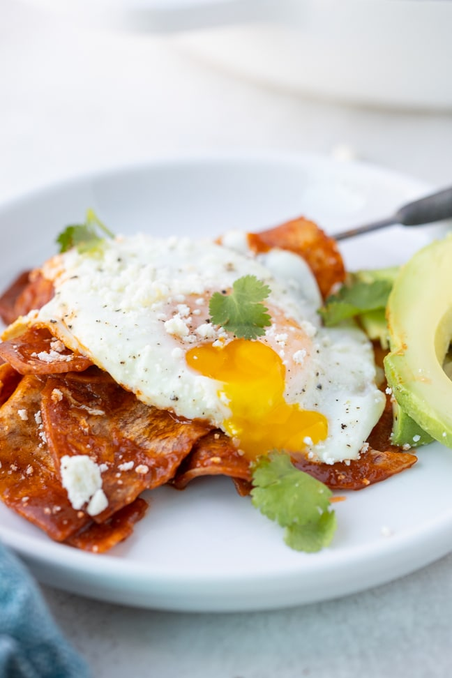 chips smothered in red sauce with an egg over easy on top with a side of avocado with cilantro as garnish, all on a white plate